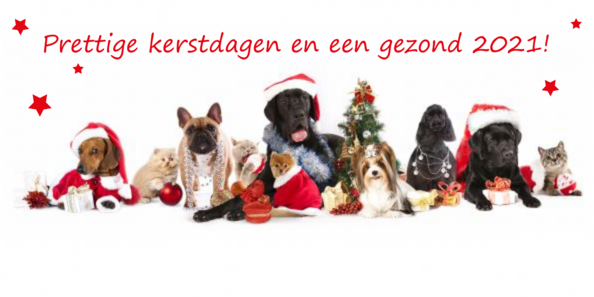 dieren gay dating site 4,975 followers, 460 following, 2,225 posts - see instagram photos and videos from omroep flevoland (@omroepflevoland.